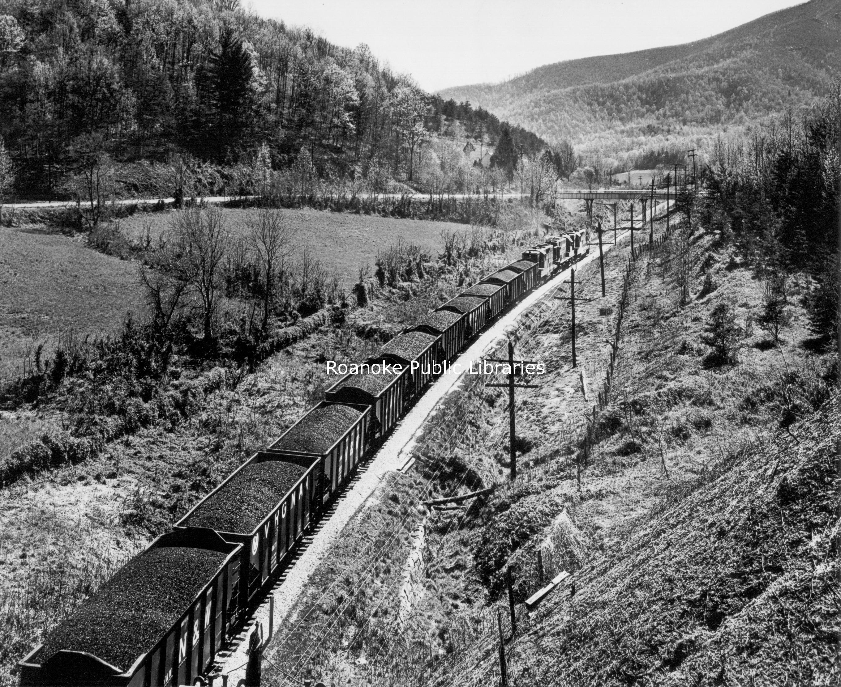 HNWR195.jpg