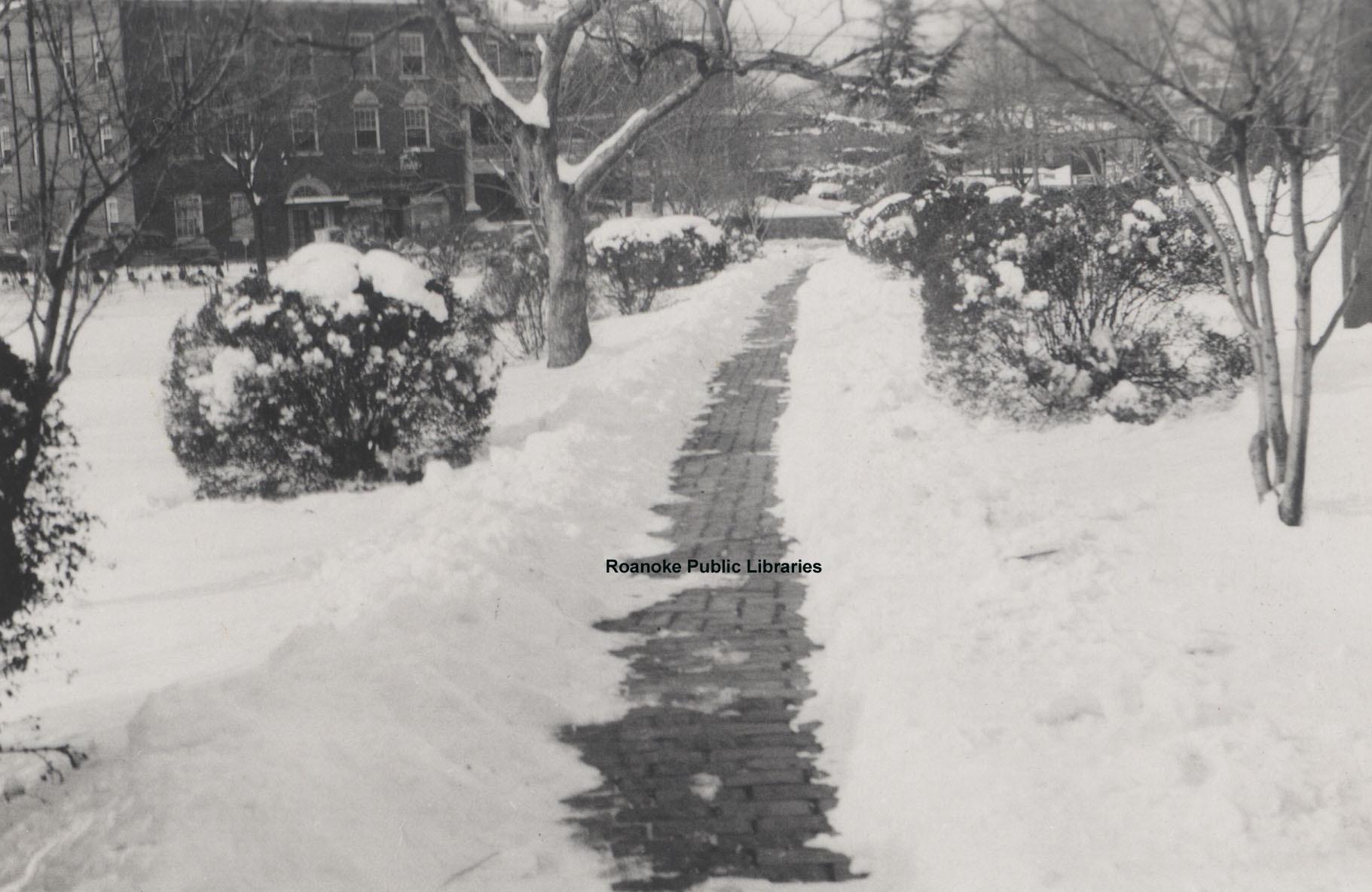 Davis 1.96A Snow in Elmwood.jpg
