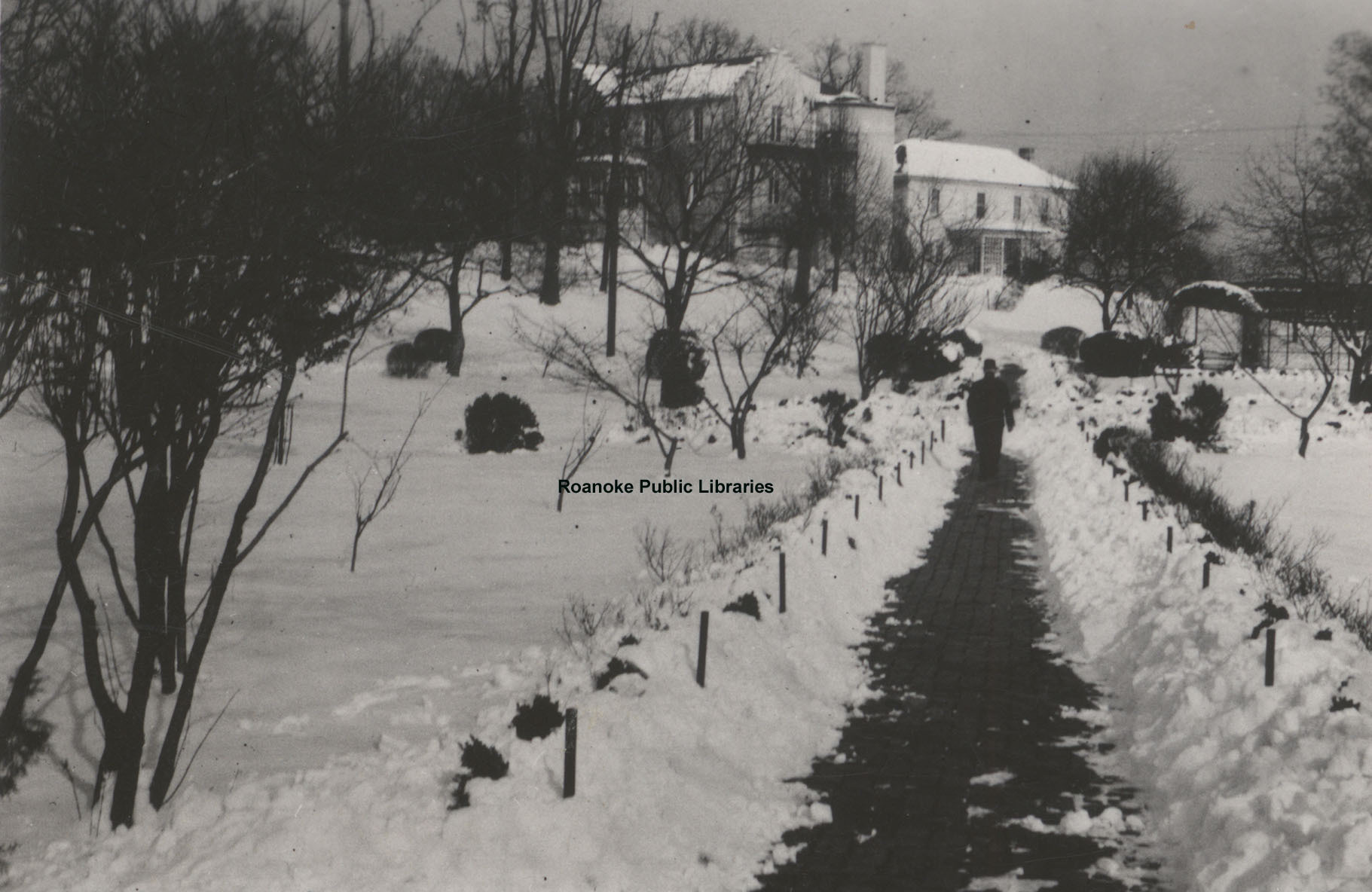 Davis 1.96B Snow in Elmwood.jpg
