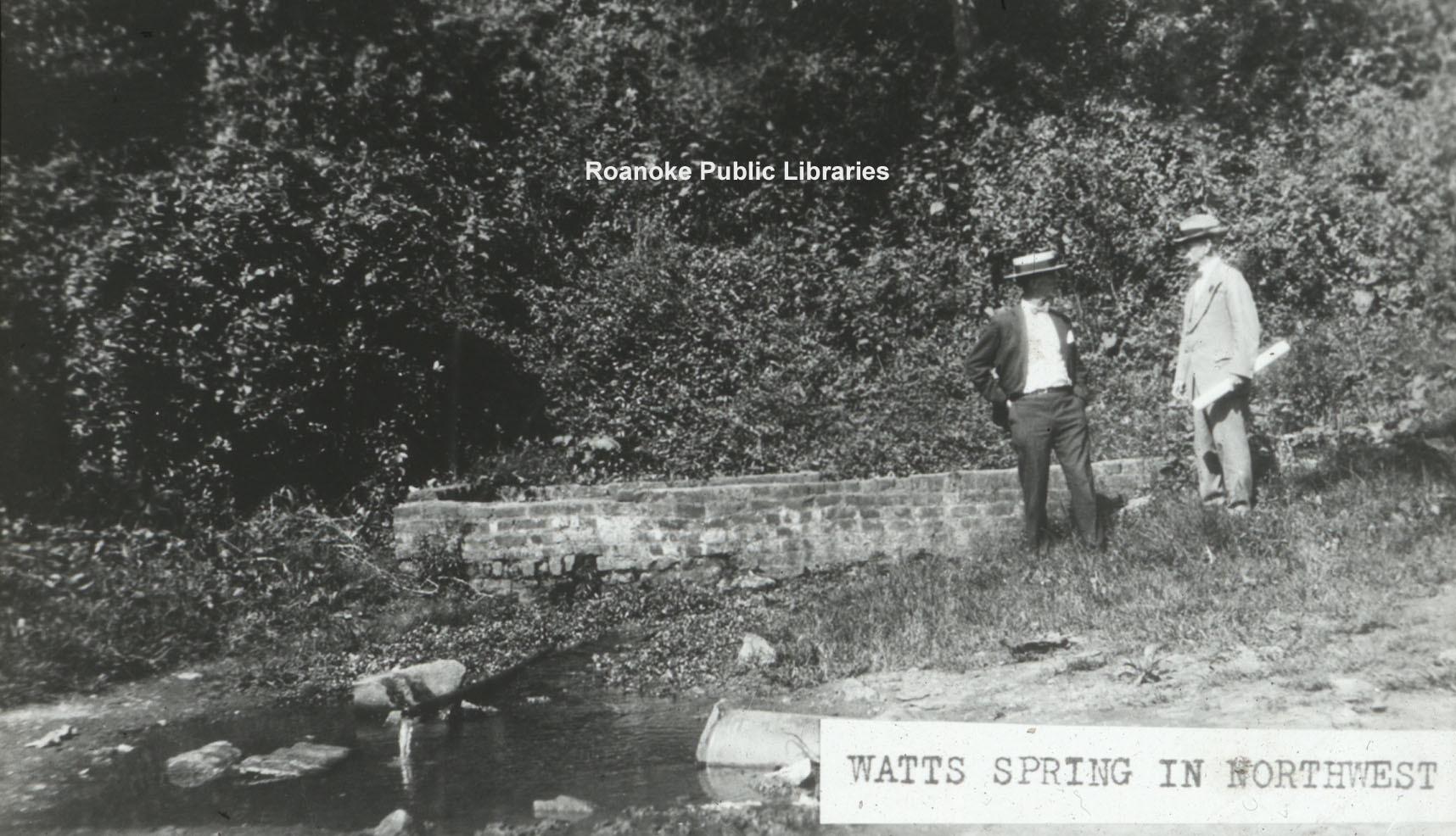 Davis GL 12 Watts Springs.jpg