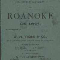 A Synopsis of Roanoke in 1891 and Her Wonderful Prosperity