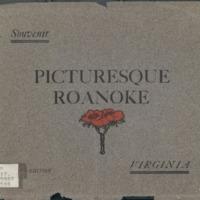 Picturesque Roanoke