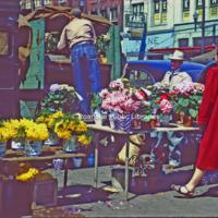 Creasy24 City Market