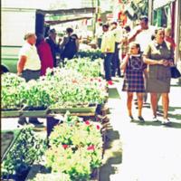 Creasy29 City Market