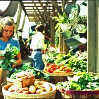 Creasy33 City Market