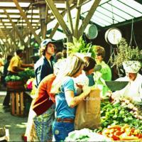 Creasy34 City Market