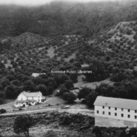 BM 267 Back Creek Orchard