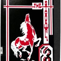 Stonewall 1988