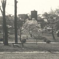 Davis 1.97 Springtime in Elmwood