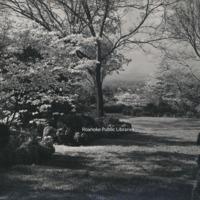 Davis 31.48 Mountain View Gardens
