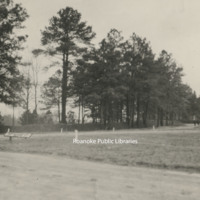Davis2 91.1h Confederate Breastworks