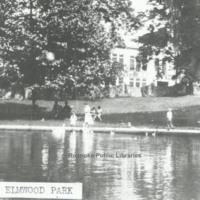 Davis GL 14 Pond in Elmwood Park