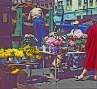 Creasy24 City Market.jpg