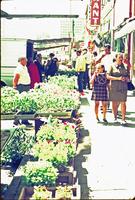 Creasy29 City Market.jpg