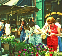 Creasy36 City Market.jpg