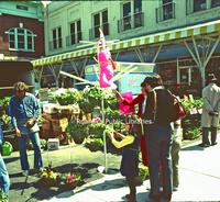 Creasy44 City Market.jpg