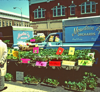 Creasy45 City Market.jpg
