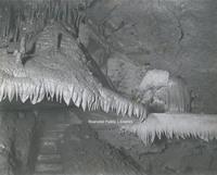 Davis 68.212a Dixie Caverns.jpg