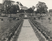 Davis 1.93 Elmwood Park looking from SW corner.jpg