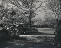 Davis 31.48 Mountain View Gardens.jpg