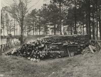Davis 91.1g Woodpile at Pine Gardens.jpg