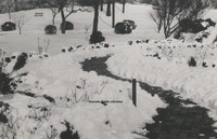 Davis 1.96 Snow in Elmwood.jpg