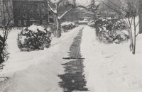 Davis 1.96A Snow in Elmwood.jpg